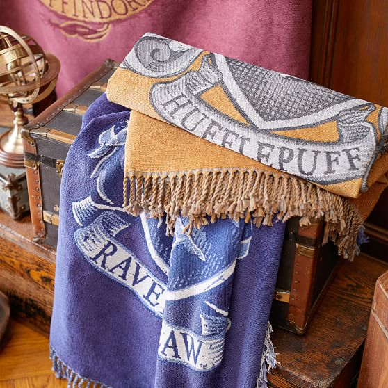 Pottery Barn teen Kids Harry Potter Slytherin crest chenille tapestry or throw