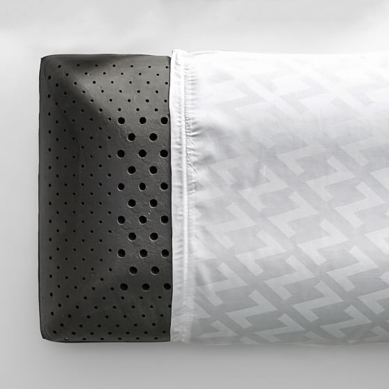 Charcoal Infused Memory Foam Pillow Insert Pottery Barn Teen